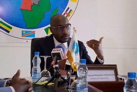 Biendi Maganga Moussavou s'exprimant sur la réduction des importations. © Gabonreview