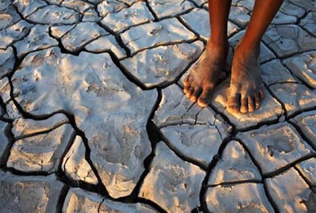 Changement climatique: Une menace à grande échelle pour l'Afrique